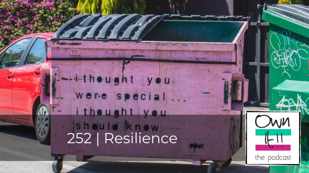 Own It! 252   Resilience