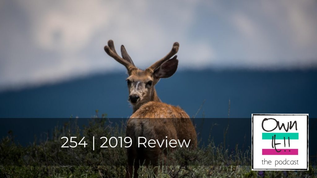 Own It! 254 | 2019 Review