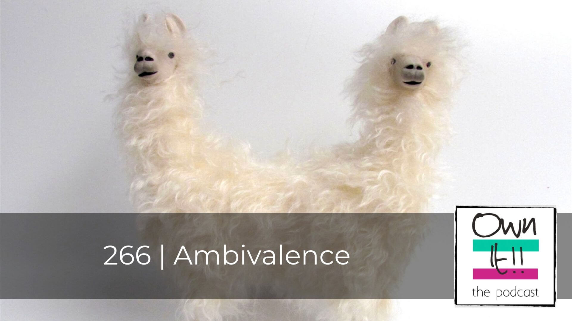 Own It! 266 | Ambivalence