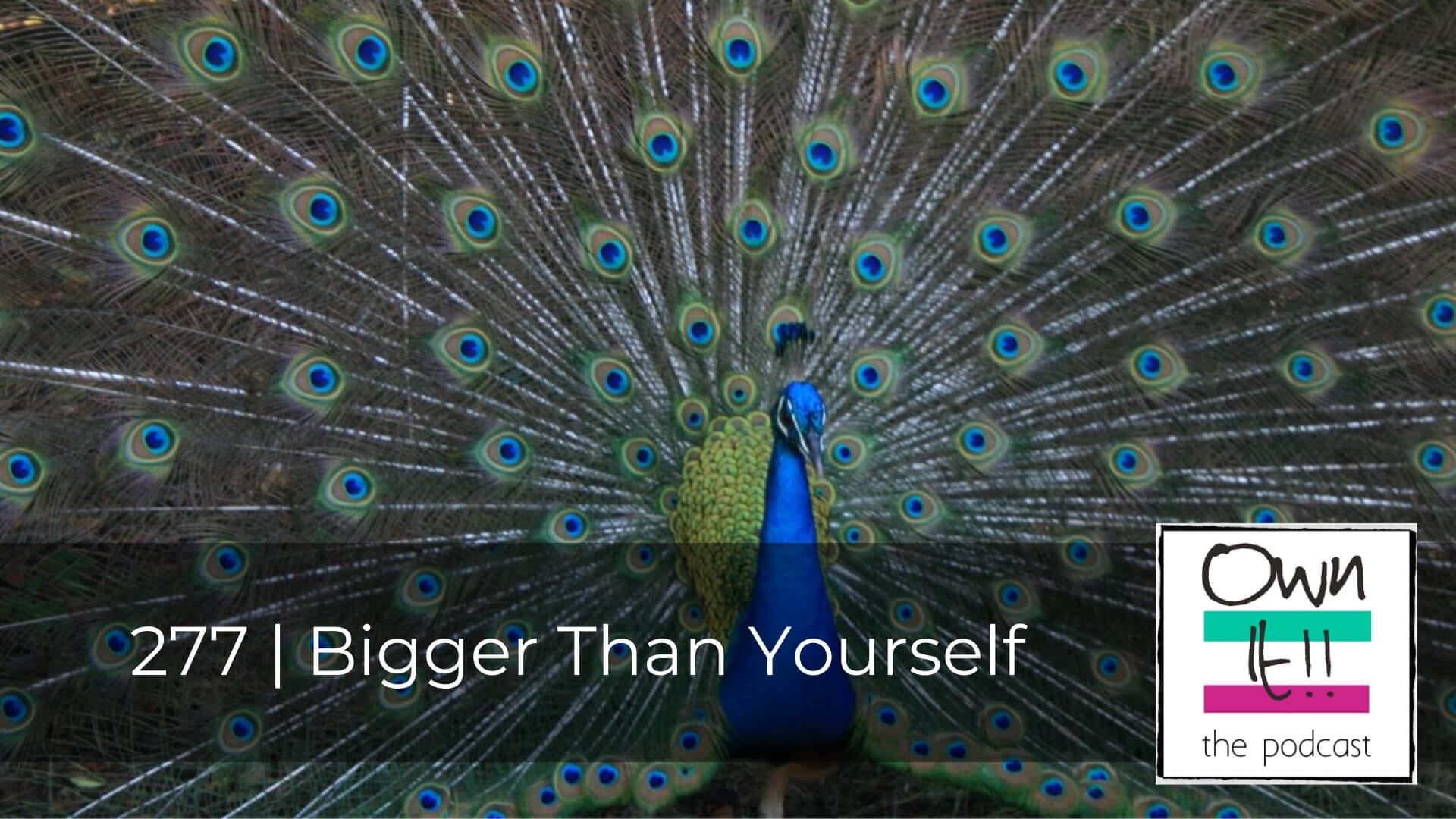 Own It! 277 | Bigger Than Yourself